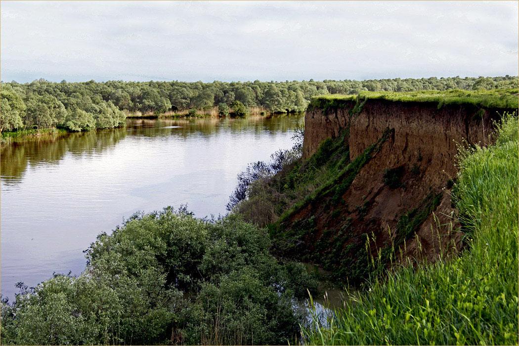 Кубань река пейзаж вода.