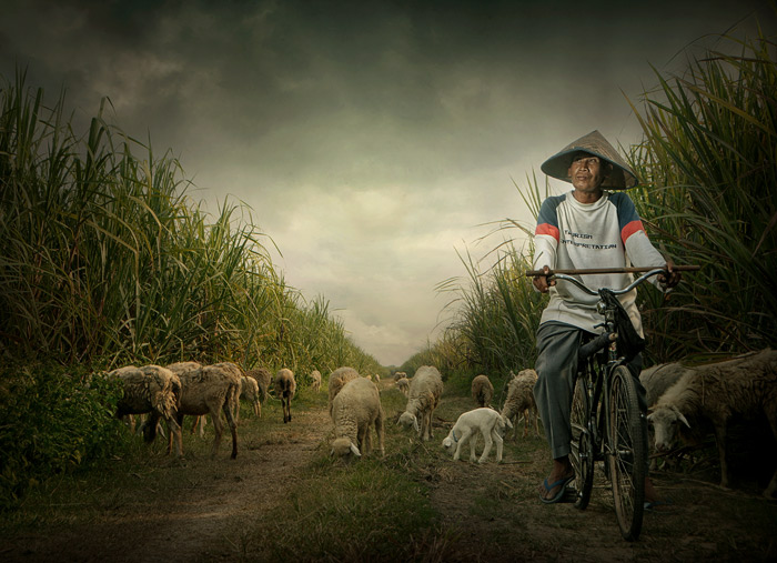 "photo ""ngadino"" tags: portrait, landscape, man"