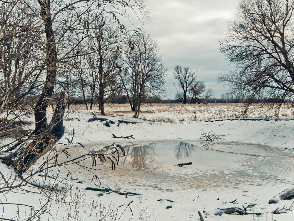 фотографии оттепели в феврале вариант