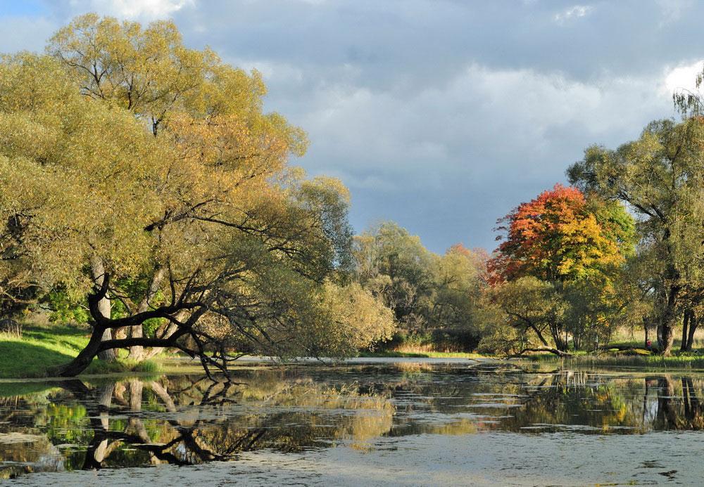 """фото """"Осенняя"""" метки: пейзаж, осень"""