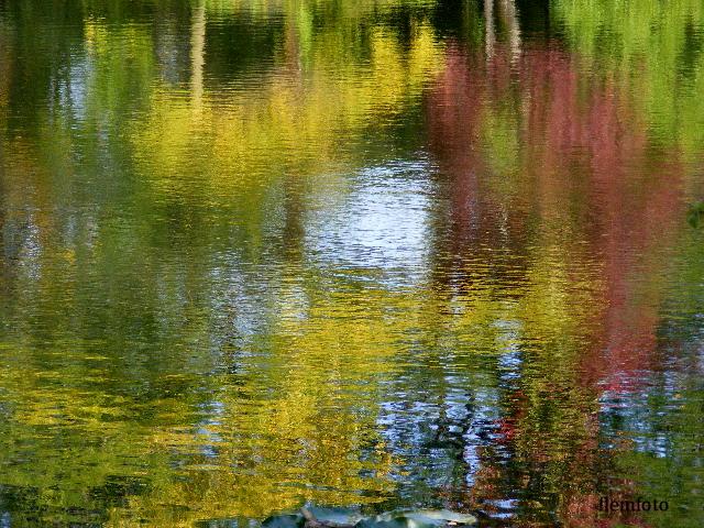 """фото """"Reflection in autumn"""" метки: природа,"""