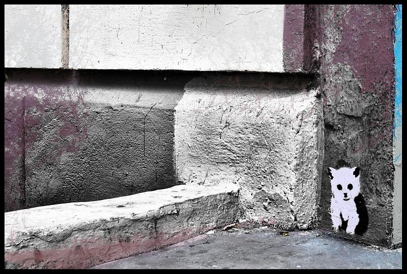 """фото """"городской призрак"""" метки: ,"""