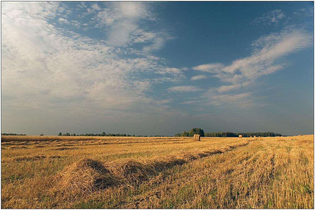 """фото """"Жнивьё"""" метки: пейзаж, облака, осень"""