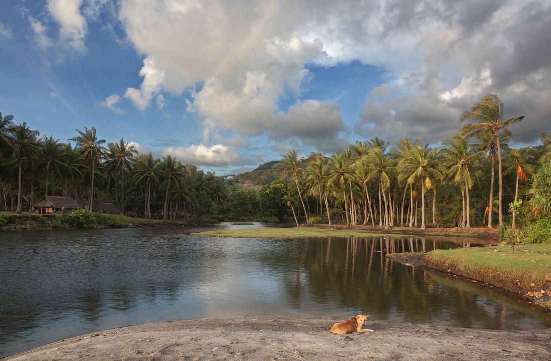 """фото """"Тропическое утро"""" метки: путешествия, пейзаж,"""