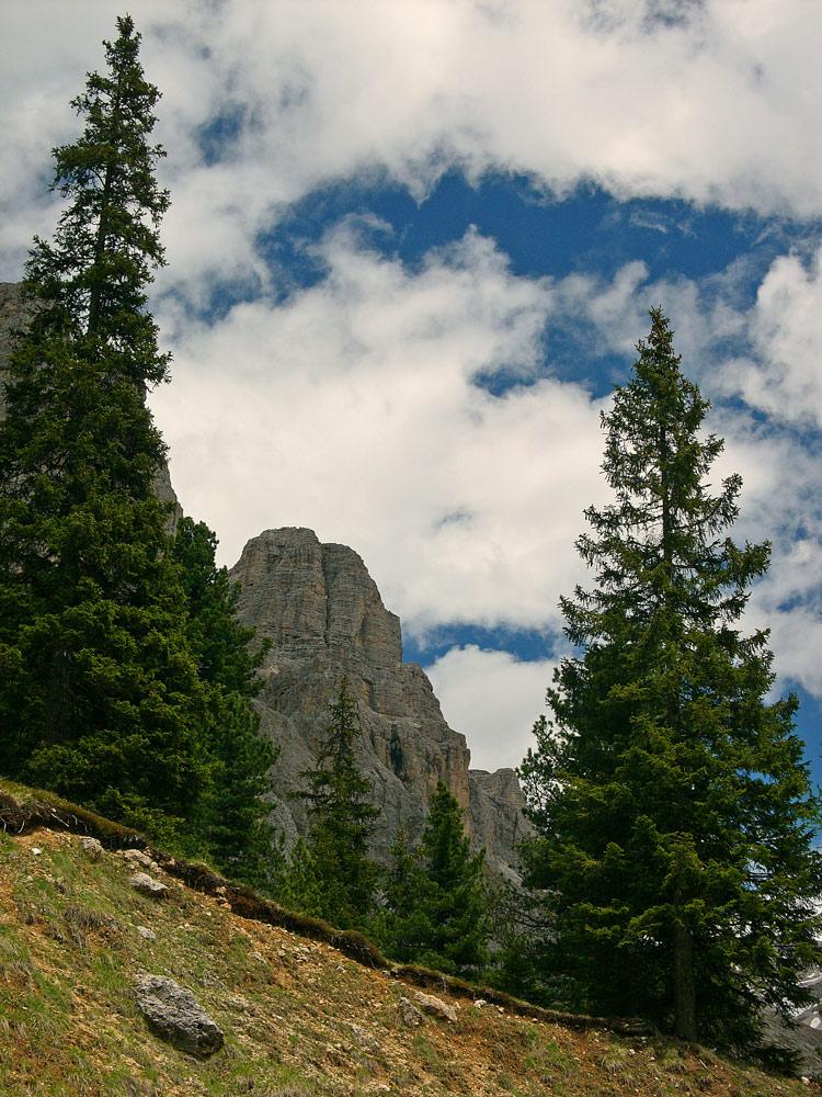 "фото ""trees"" метки: пейзаж, горы"