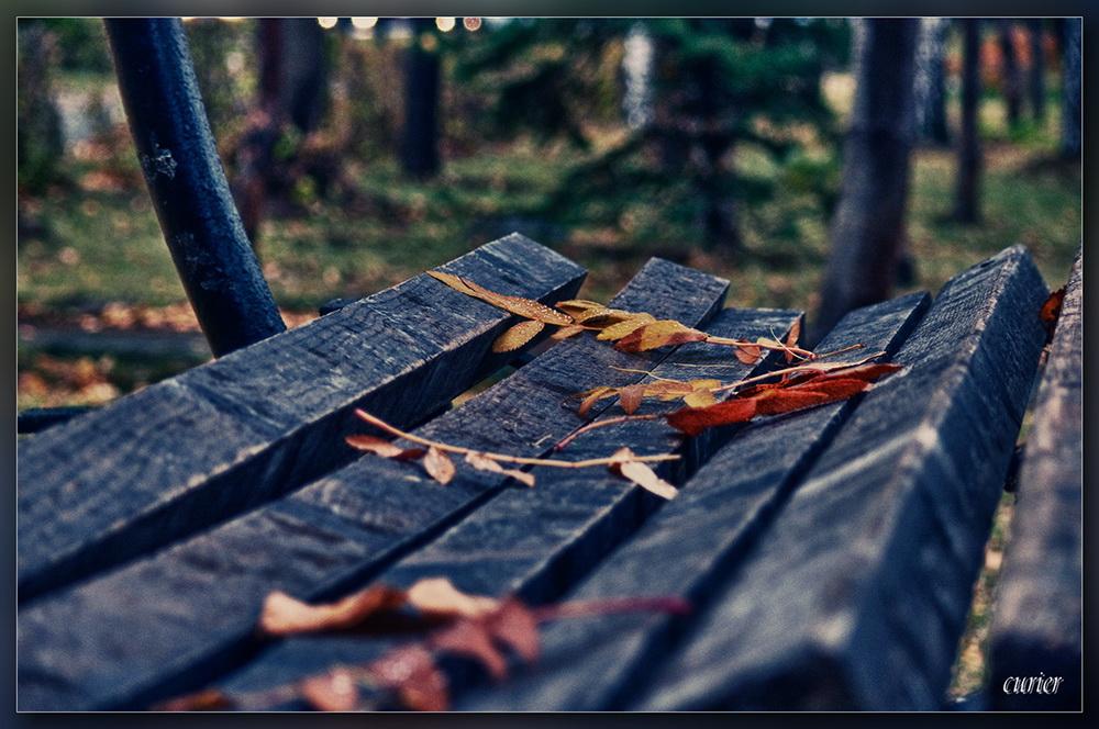 """фото """"***"""" метки: пейзаж, природа, осень"""