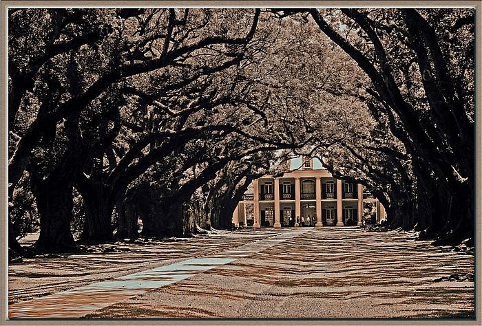 "photo ""Oak Alley Plantation"" tags: travel, architecture, landscape, North America"