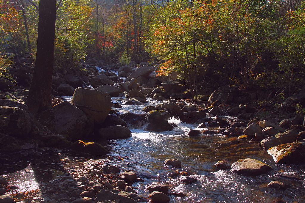"фото ""Осенним вечерком"" метки: пейзаж, осень"