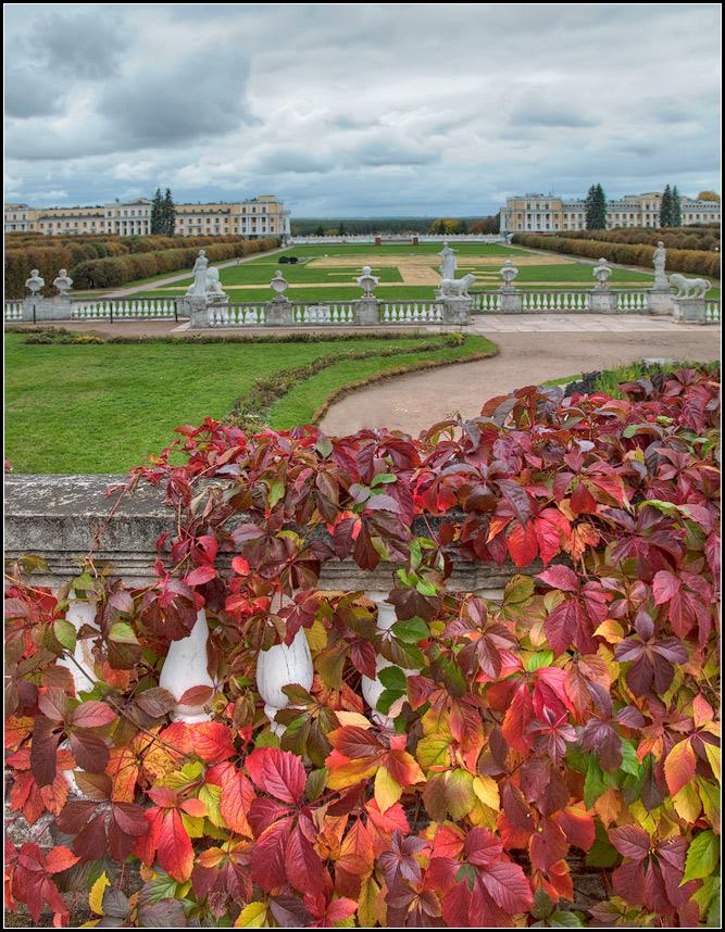 """фото """"осень"""" метки: пейзаж, природа, осень, цветы"""