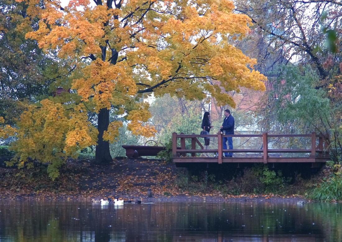 """фото """"Под кленом"""" метки: пейзаж, осень"""