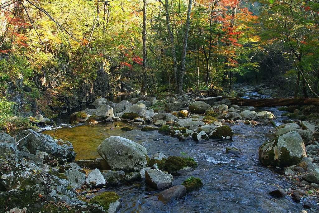 """фото """"Вниз по течению"""" метки: пейзаж, вода"""