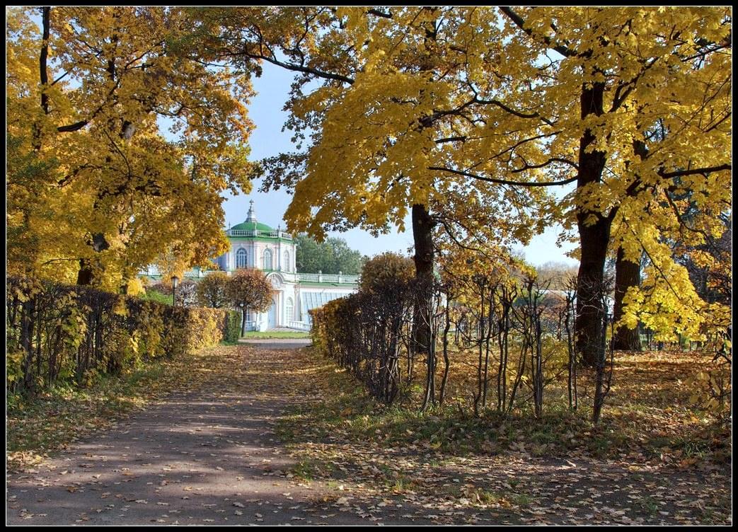 "фото ""в старом парке"" метки: пейзаж, осень"