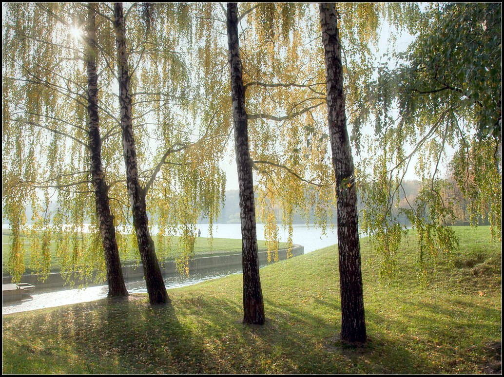"photo ""autumn light"" tags: landscape, autumn"