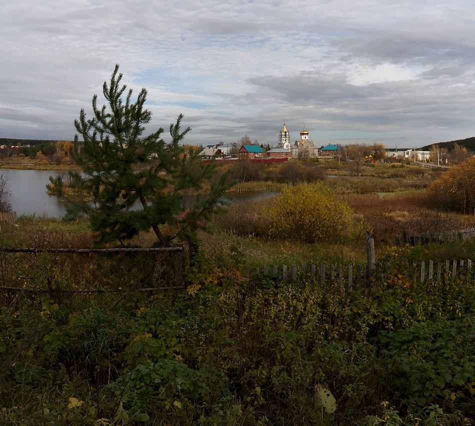 """фото """"Вечнозелёное и осень.."""" метки: пейзаж,"""