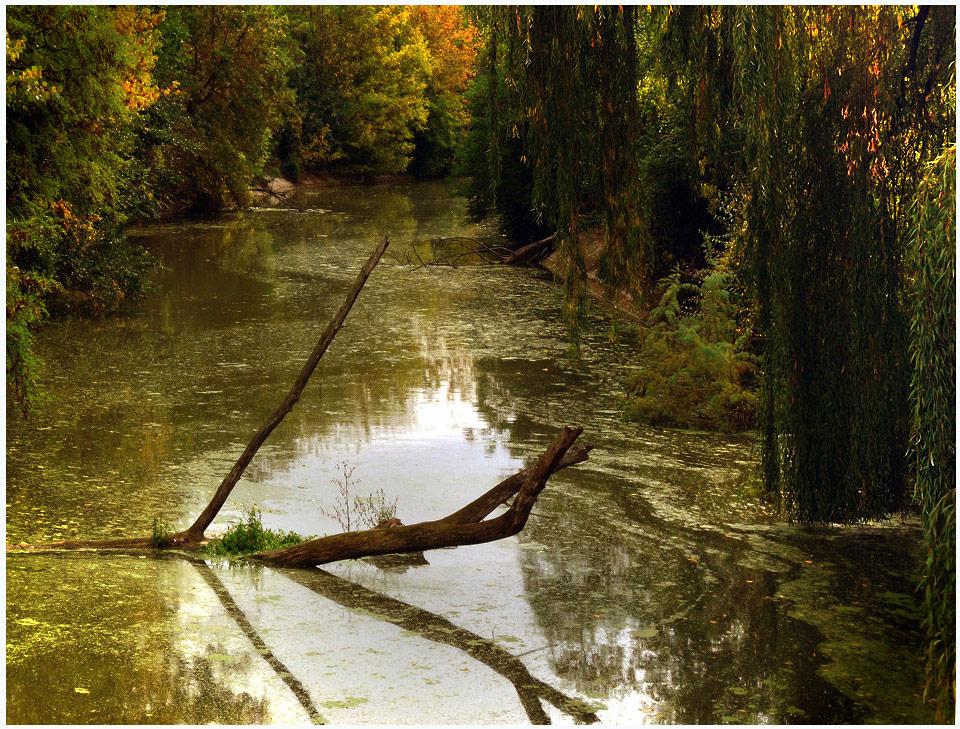 """фото """"Безвременье"""" метки: пейзаж,"""