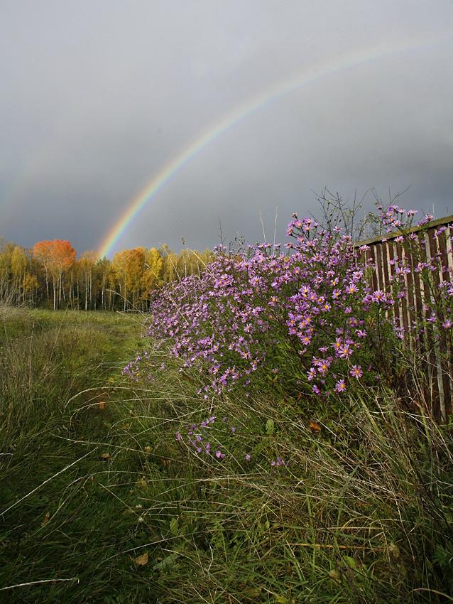 """фото """"Фотодуэль """"Душа осени"""""""" метки: пейзаж, осень"""