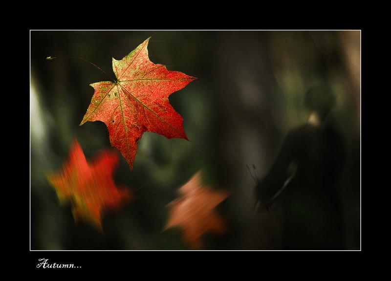 "фото ""Autumn..."" метки: фотомонтаж, разное,"