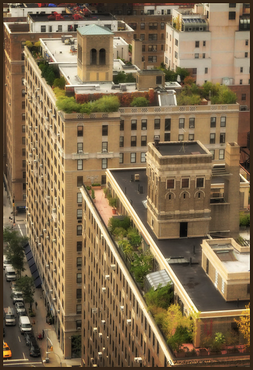 """photo """"Hanging gardens of New York City"""" tags: ,"""