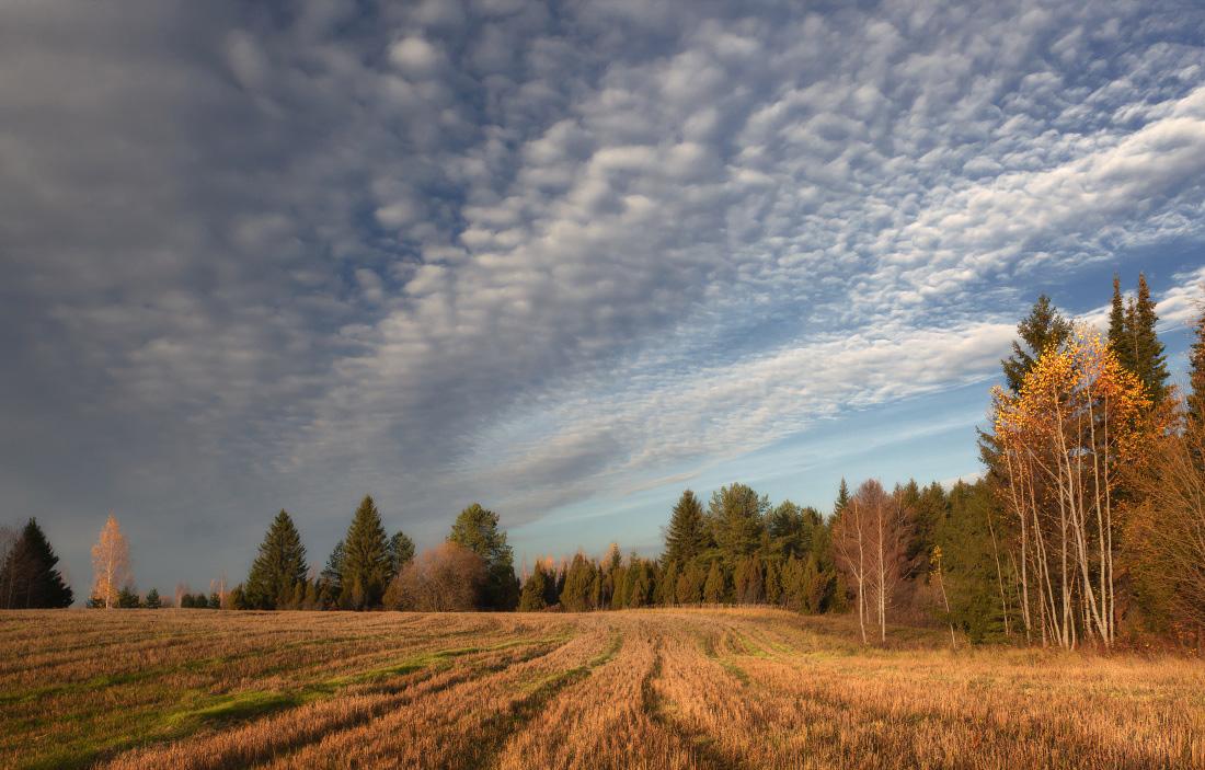 """фото """"Поздняя осень"""" метки: пейзаж, осень"""
