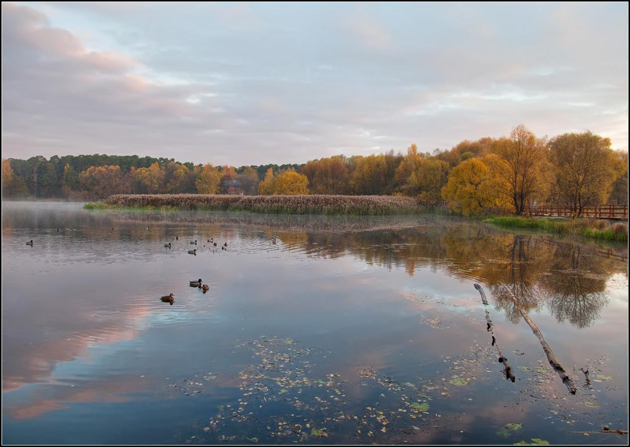 """фото """"осеннее утро"""" метки: пейзаж, вода, осень"""