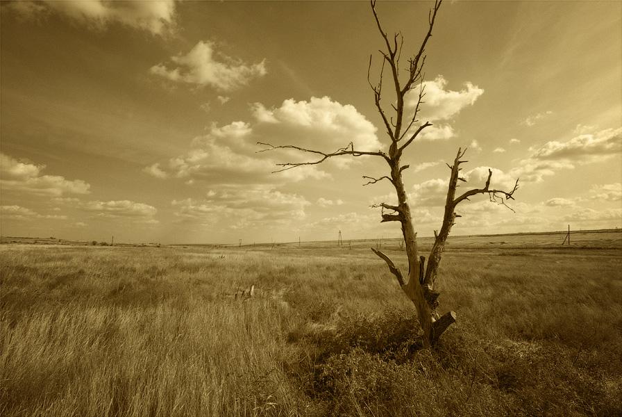 "фото ""без конца и края"" метки: пейзаж, облака, осень"