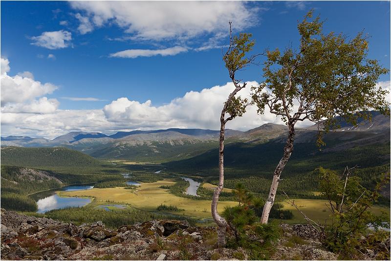"""фото """"Лето в горах.Север."""" метки: пейзаж, горы, лес"""