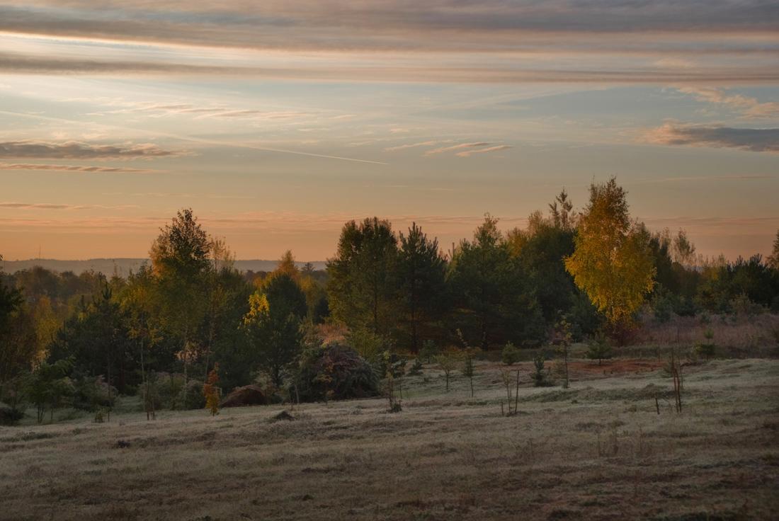 "фото ""Розовые заморозки"" метки: пейзаж, осень"