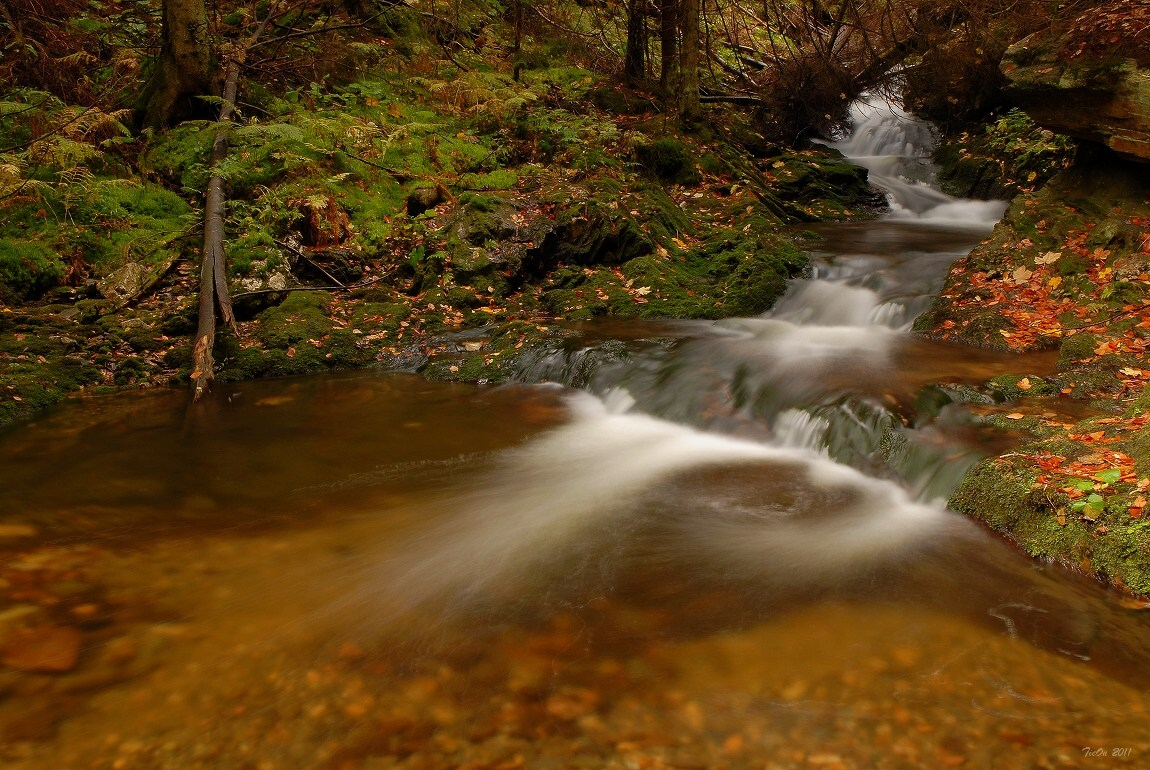 """фото """"Стремнины"""" метки: пейзаж, вода, осень"""