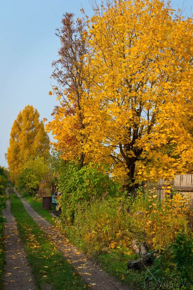 "photo ""***"" tags: landscape, autumn"