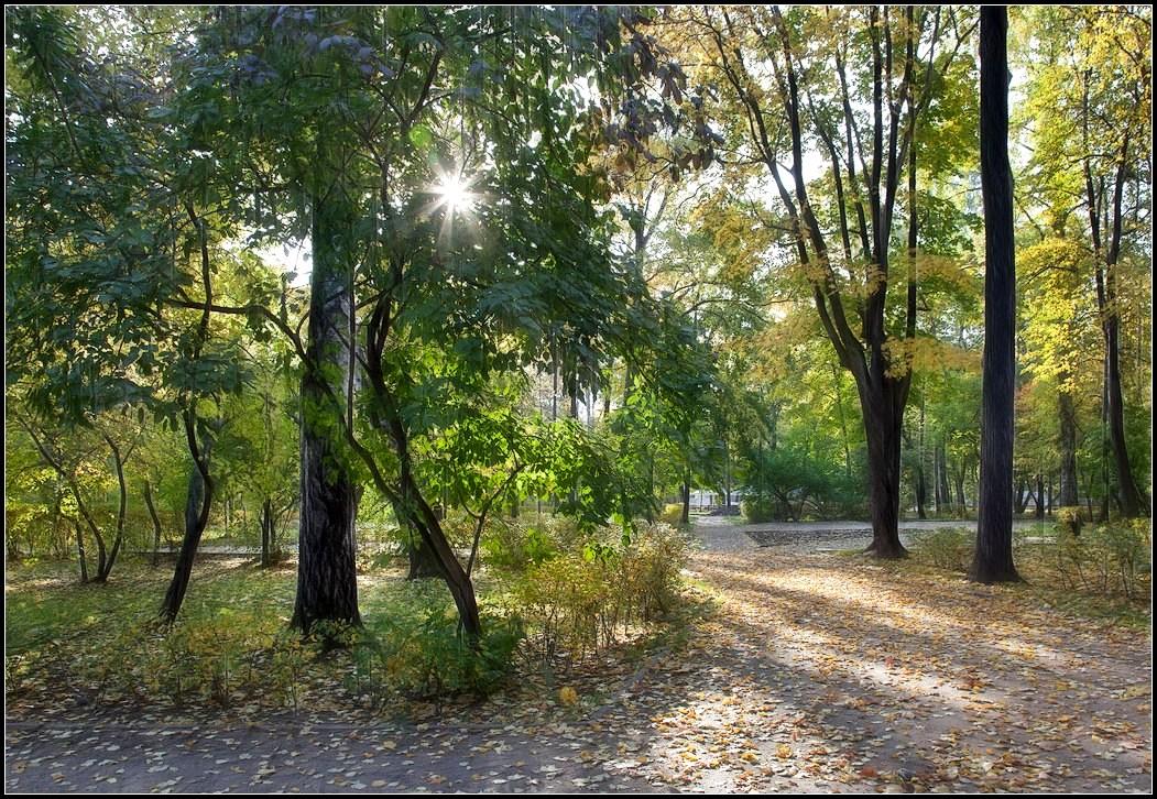 "фото ""осень в парке"" метки: пейзаж, осень"