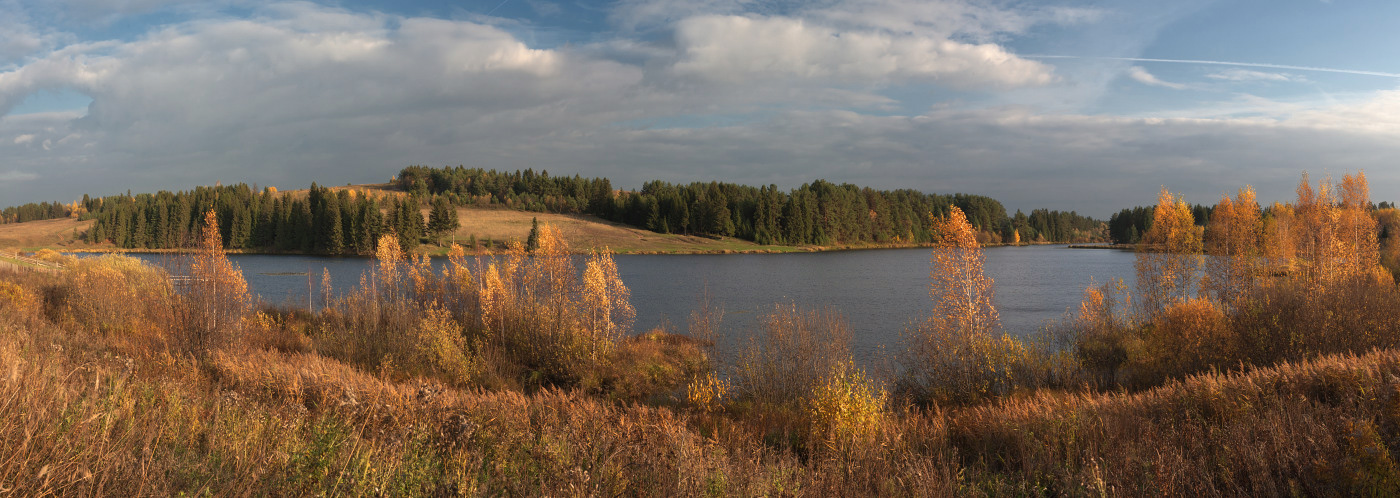 "фото ""Березы против ёлочек"" метки: панорама, пейзаж, осень"