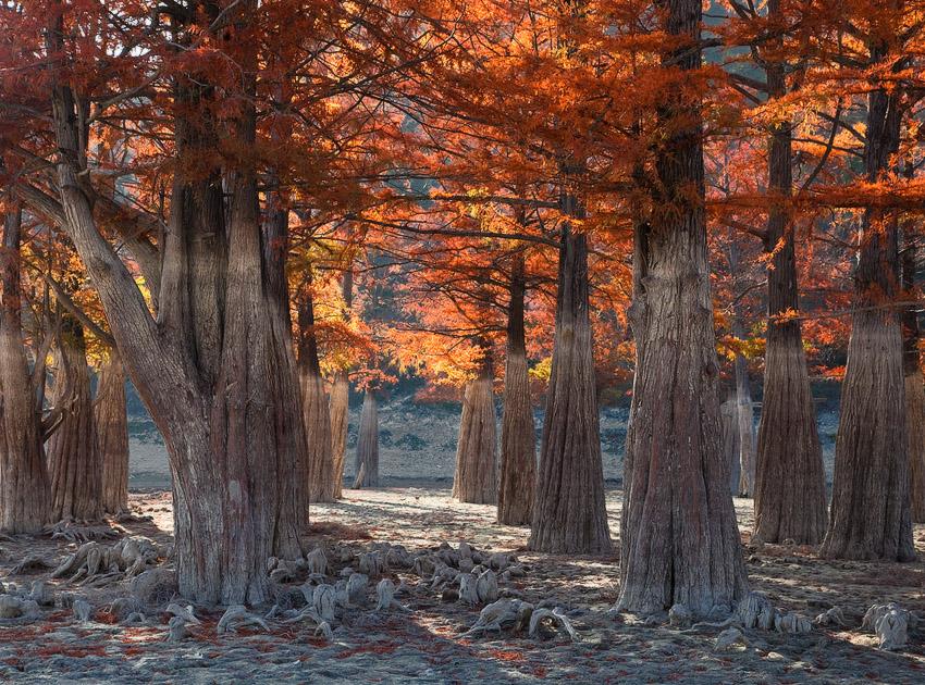 """фото """"Этой осенью"""" метки: пейзаж, осень"""