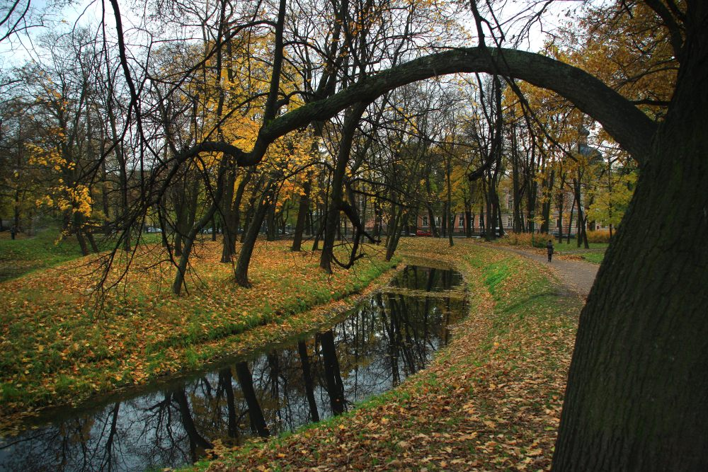 """фото """"осень в таврическом"""" метки: ,"""