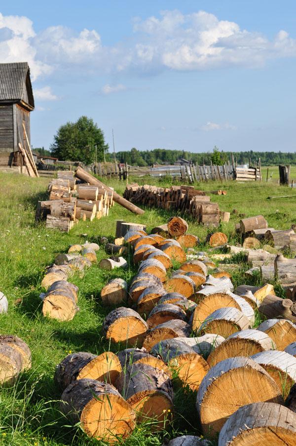 """фото """"Деревня"""" метки: пейзаж, лето"""