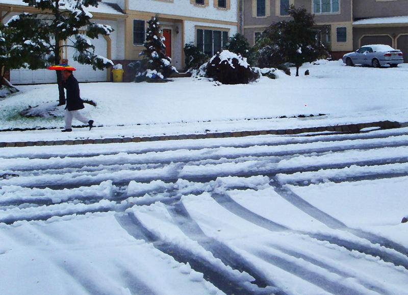 """фото """"Первый снег в Принстоне"""" метки: пейзаж, зима"""