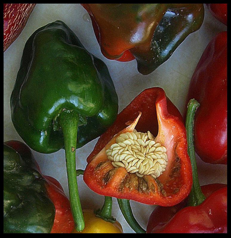 "фото ""Peppers"" метки: натюрморт,"