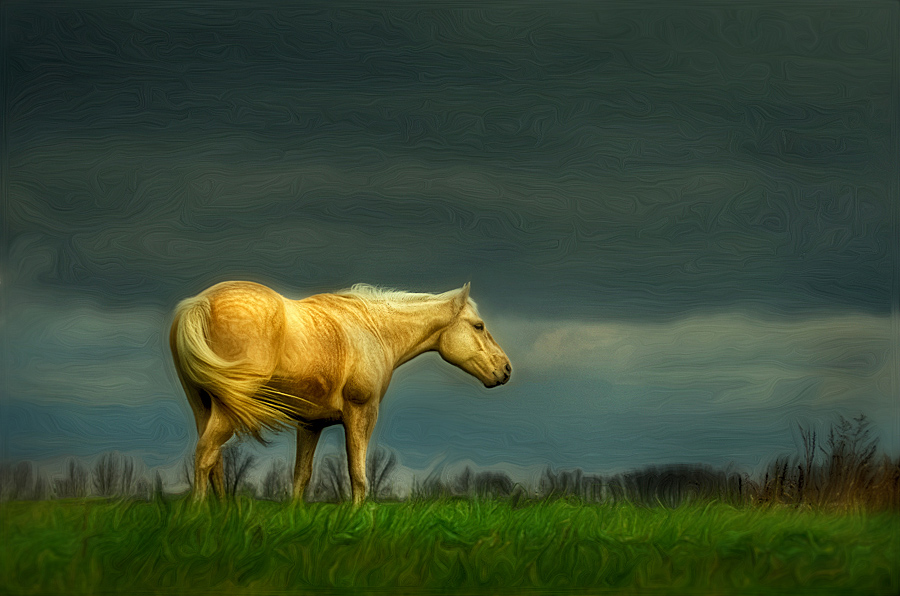 "фото ""Palomino Art"" метки: digital art,"