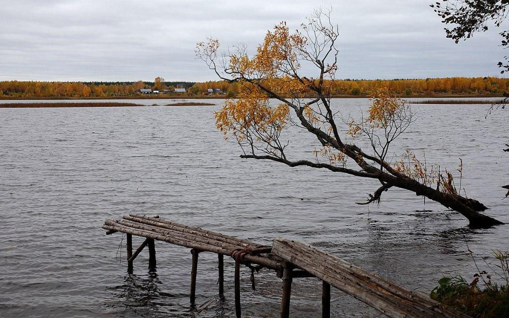 """фото """"Осенние реки"""" метки: пейзаж, осень"""