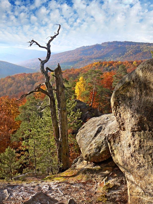 """фото """"вечность и мимолётность"""" метки: пейзаж, горы, осень"""