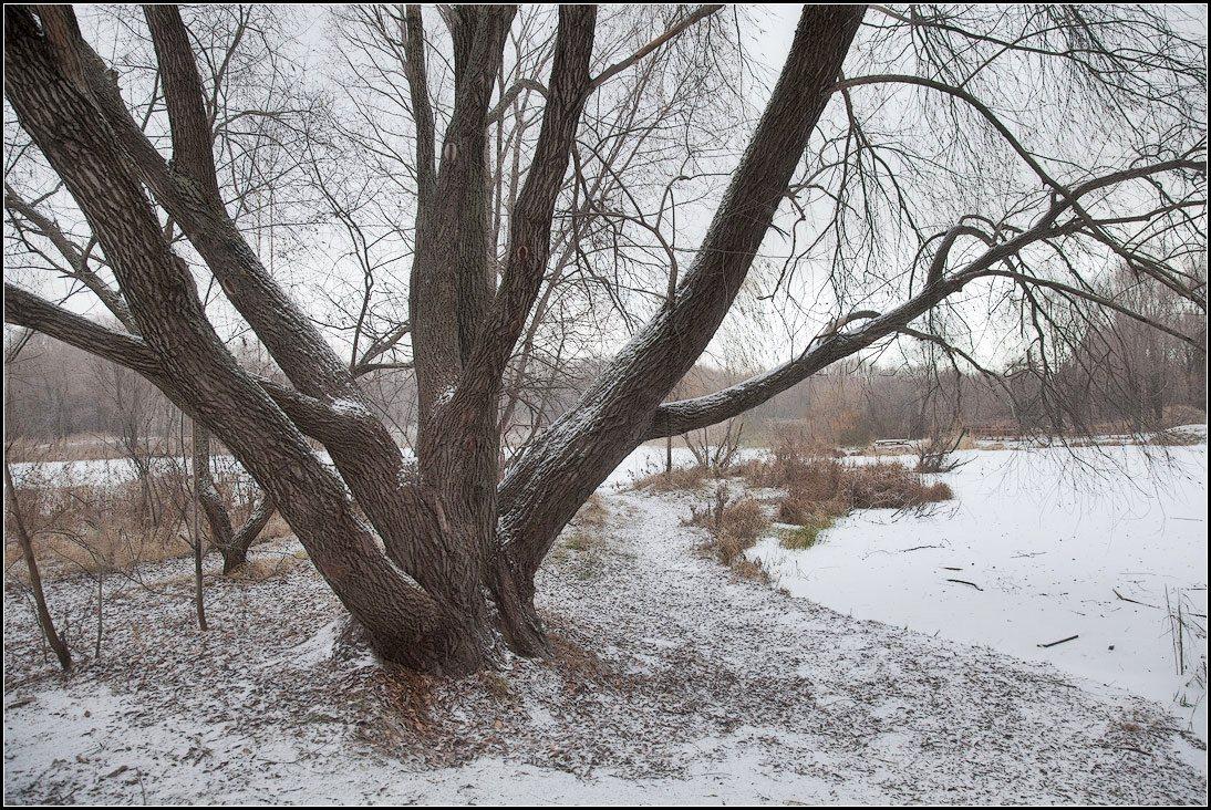 "фото ""предзимье"" метки: пейзаж, осень"
