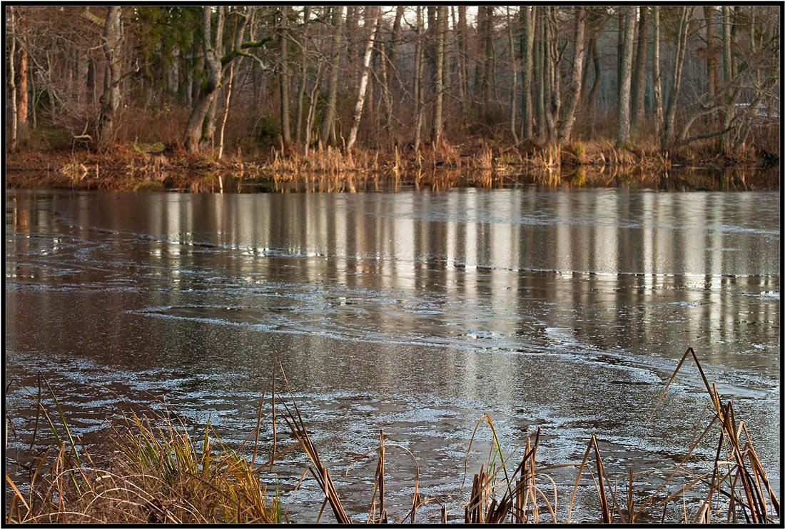 """фото """"Первый лед."""" метки: пейзаж, осень"""