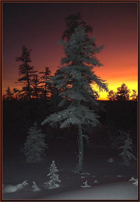 """фото """"Зимние зори 2"""" метки: пейзаж, закат, зима"""