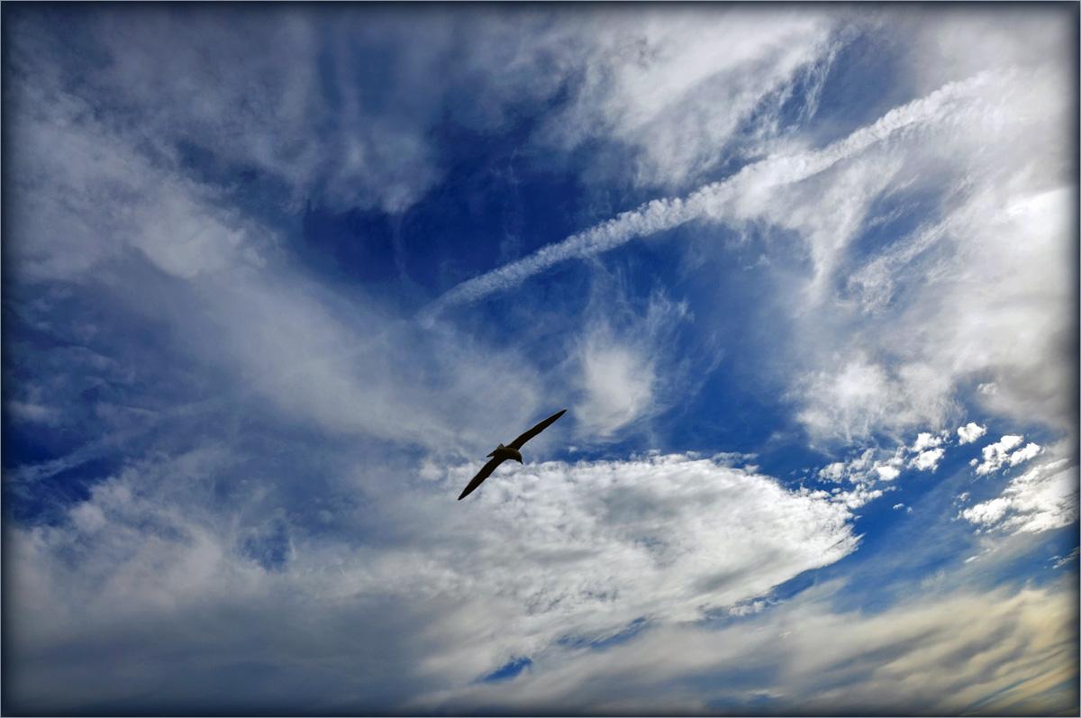 """фото """"Воздушные дороги"""" метки: пейзаж, облака"""