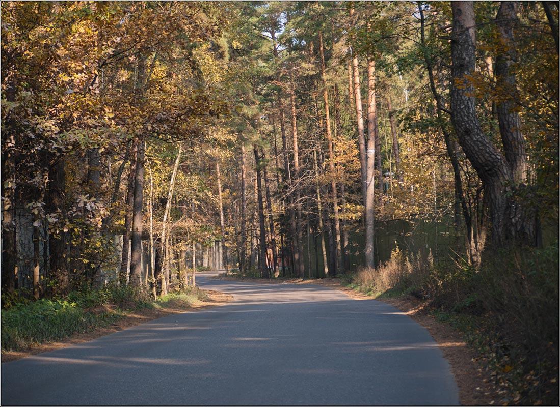 """фото """"Между двумя заборами.."""" метки: пейзаж, осень"""