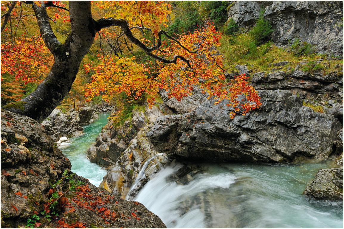 """фото """"Осень в ущелье Анискло"""" метки: пейзаж, природа, Испания, осень"""