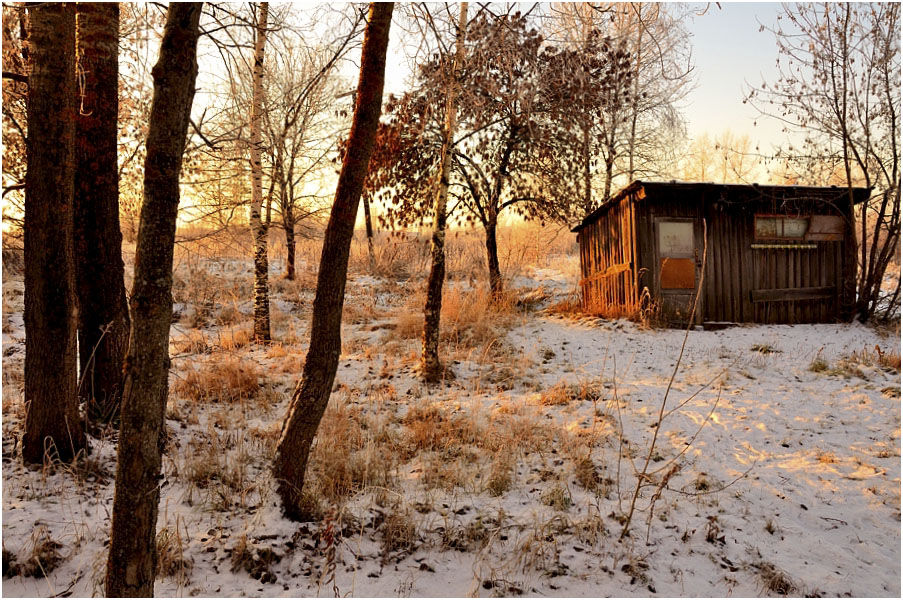 """фото """"А ведь вчера было лето..."""" метки: пейзаж, природа, зима"""