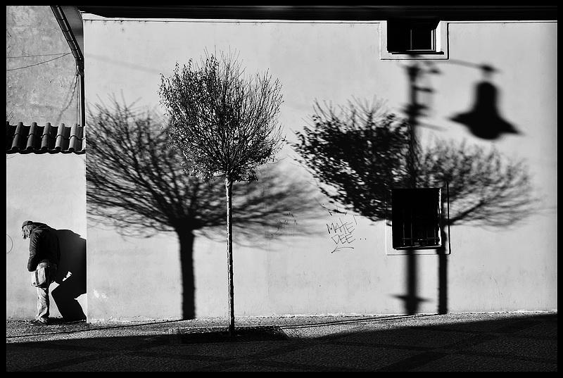 """фото """"Стена а тени"""" метки: черно-белые,"""