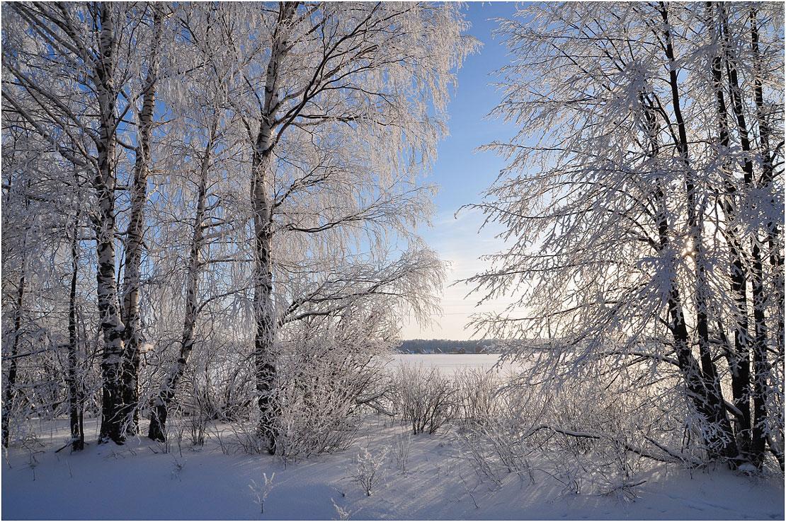 """фото """"В серебре"""" метки: пейзаж, зима"""