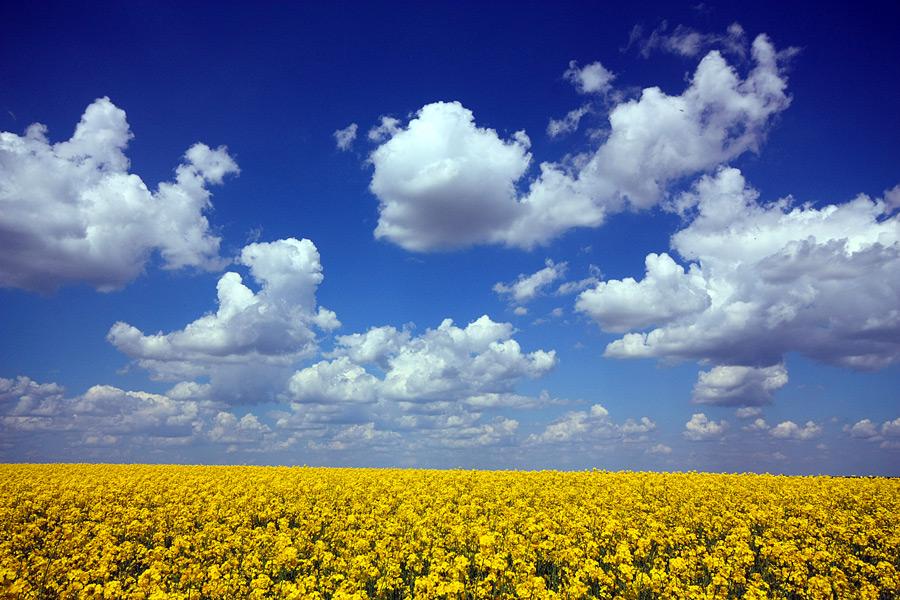 """фото """"Hot June"""" метки: пейзаж, весна, небо, облака"""