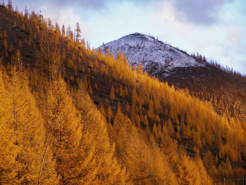 """фото """"Осень и зима"""" метки: ,"""